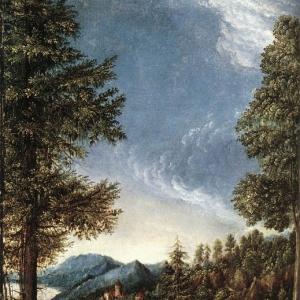 Альтдорфер Альбрехт - Придунайский пейзаж 1520
