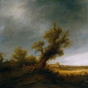 Адриан ван Остаде - Пейзаж со старым дубом