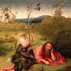 Иоанн Креститель в пустыне (1504-1505)