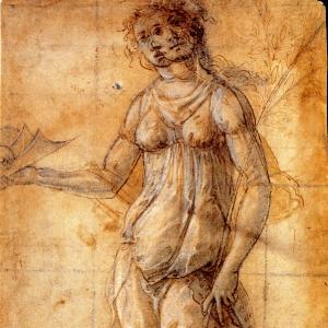 Паллада (ок.1490)