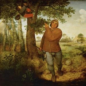 Разоритель гнёзд (1568)