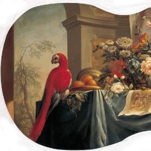 Цветы, фрукты, попугай. 1754
