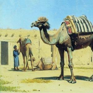 Верблюд во дворе караван-сарая