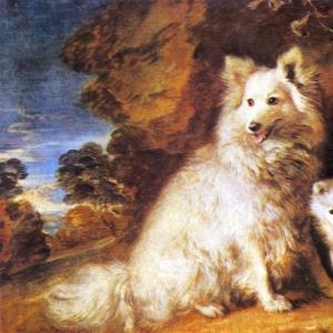 Две собаки (Бич и Паппи)