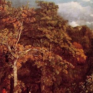 Джон Констебл - Лесной пейзаж