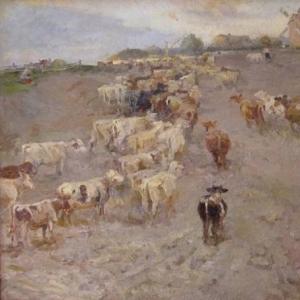 Пастушок.