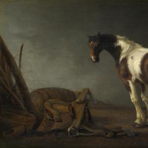 Абрахам ван Калрает - Лошадь с седлом рядом