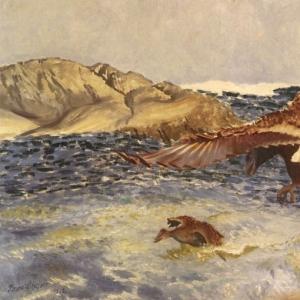 Бруно Лильефорс - Морской орёл, преследующий утку эйдер