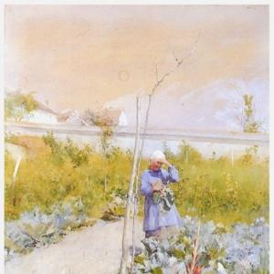 Карл Ларсон - В огороде, 1883