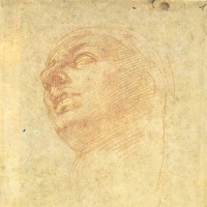 Микеланджело Буанаротти_3