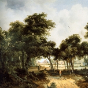 Хоббема Мейндерт - Разрушающиеся дома на опушке леса