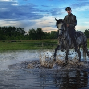 На коне_19