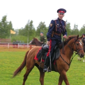 На коне_219