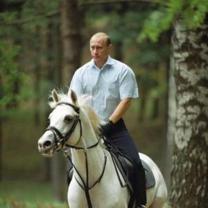 На коне_256