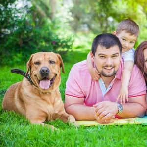 Семейные_портреты__152